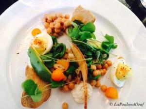 Salade de ricotta, kumquat confit, avocat, oseille des bois, tête de violons et oeuf mimosa.
